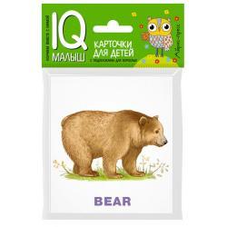 Зоопарк. Карточки для детей. Английский язык